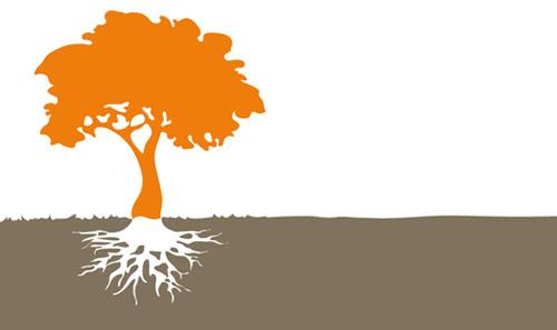 Espace de santé au Naturel - Fleur de Vie : consultations